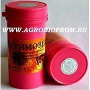 Стимовит (пыльца цветочная, экстракт чеснока, глюкоза) 1фл. — 40 г, фото