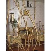 Перегородки из гнутого бамбука фото