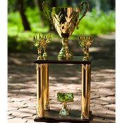 Кубок двухэтажный K333 фото