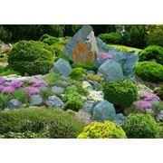 Элементы ландшафтного дизайна из натурального камня фото