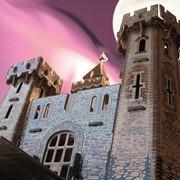Конструктор Рыцарский замок фото
