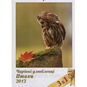 Календар «Птахи» фото