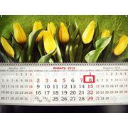 """Календарь квартальный 2013 """"Тюльпаны"""" фото"""