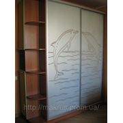 Изготовление шкафов купе от 2700 гривен пог\м