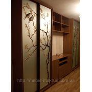 Шкафы купе с рисунком на зеркале-от 3400 грн.пог/м фото