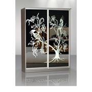 Шкафы купе цены Чернигов — фасад крашеное стекло с рисунком фото