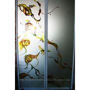 Художественная роспись для шкафов-купе 012