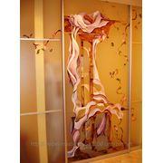 Художественная роспись для шкафов-купе 013