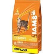 IAMS Cats Adult rich in Chicken 1,5 кг фото