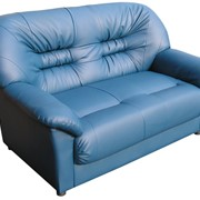 Офисный диван Честер (двухместный) фото