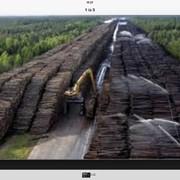 Услуги лесовоза, сортиментовоза. фото