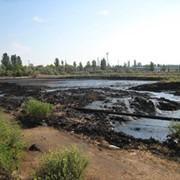 Рекультивация и очистка грунта от нефтепродуктов фото