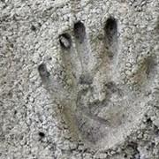 Цемент. Цемент цена. Цемент купить. фото
