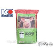 Стартер для свиней 20% (6093)