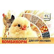 Комбикорм для кур-несушек, старт для цыплят ПК 2-6