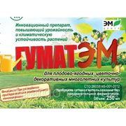 """""""ГУМАТЭМ"""" для плодово-ягодных, цветочно-декоративных многолетних культур"""
