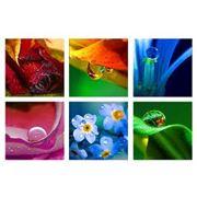 Фотобумага от компании Канцелярский сервис оптовая и розничная продажа в Симферополе фото