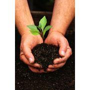 Pазработка специальных разделов проектов - оценка влияния на окружающую среду фото