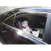 Детское такси - Toyota Camry фото