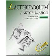 Лактобифадол для кошек фото