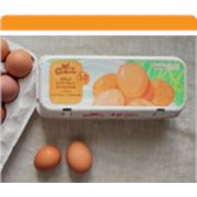 Яйцо столовое фото