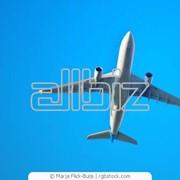 Авиатуры фото