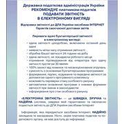 Доставка бухгалтерской отчетности в контролирующие органы в электронном виде фото