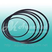 Уплотнительное кольцо к колбе MIGNON. фото
