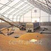 Зернохранилища напольного и бункерного хранения фото