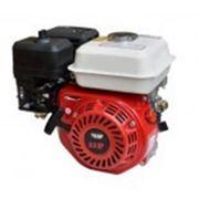Двигатель WEIMA WM168FB фото