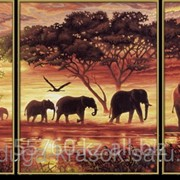 Картина стразами Африканские слоны 20*50-2шт, 40*50-1шт фото