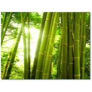 Подушки Бамбук фото