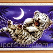 Набор для вышивки картины Тигренок 46х36см 373-37010730 фото