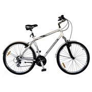 """Велосипед Comanche HOLIDAY M 19"""" Silver (26"""") фото"""