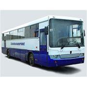 Автобус НЕФАЗ-5299 Междугородный фото
