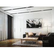 Картины, фото и репродукции на холсте (300х400) фото