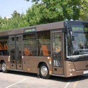 Автобус МАЗ-226 фото