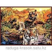 Картина по номерам СЕМЬЯ ТИГРОВ фото