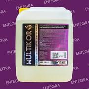 Средство для химчистки салона Multikor (5л)
