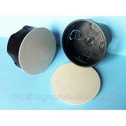 Монтажная коробка в бетон и кирпич распределительная d 100 mm, h45mm, крышка с цельным кольцевым ободком фиксатором: ISO 9001, УКРСЕПРО фото