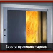 Ворота противопожарные фото