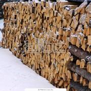 Распиловка лесоматериалов, услуги пилорамы Киев фото