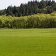 Оценка земли нормативная и экспертная фото