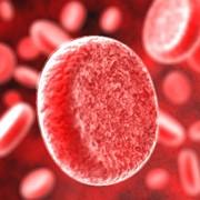 Свертываемость крови фото