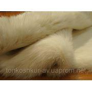 Мех одёжный белый кролик фото