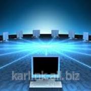 Монтаж локальной сети для офисов и предприятий фото