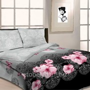 Комплект постельного белья 2-Х СПАЛЬНЫЙ БЯЗЬ B 20 фото