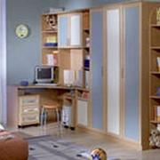 Мебель корпусная на заказ фото