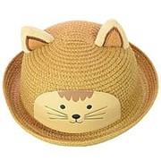 Шляпа детская 152017-4 коричневый фото