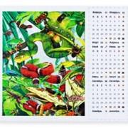 Пазло-картина 500 + календарь Змеи фото
